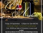 Wine Auction Fundraiser at DHS